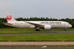 こだしさんが、成田国際空港で撮影した日本航空 787-8 Dreamlinerの航空フォト(飛行機 写真・画像)