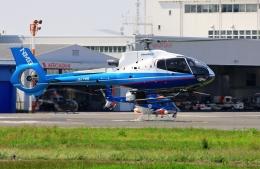 kaeru6006さんが、東京ヘリポートで撮影した日本法人所有 EC130B4の航空フォト(飛行機 写真・画像)