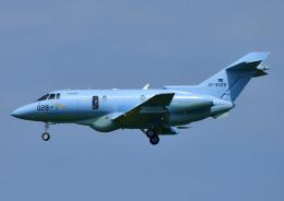 じーく。さんが、小松空港で撮影した航空自衛隊 U-125A(Hawker 800)の航空フォト(飛行機 写真・画像)