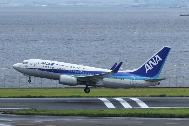 航空フォト:JA05AN 全日空 737-700