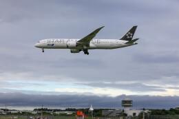 Kaaazさんが、成田国際空港で撮影した全日空 787-9の航空フォト(飛行機 写真・画像)
