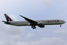 こだしさんが、成田国際空港で撮影したカタール航空 777-3DZ/ERの航空フォト(飛行機 写真・画像)