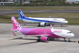 航空フォト:JA04VA ピーチ A320