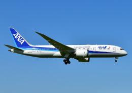 航空フォト:JA829A 全日空 787-8 Dreamliner