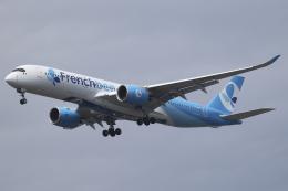 航空フォト:F-HREV フレンチビー A350-900