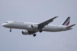 Sharp Fukudaさんが、パリ オルリー空港で撮影したエールフランス航空 A321-111の航空フォト(飛行機 写真・画像)