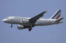 Sharp Fukudaさんが、パリ オルリー空港で撮影したエールフランス航空 A319-113の航空フォト(飛行機 写真・画像)