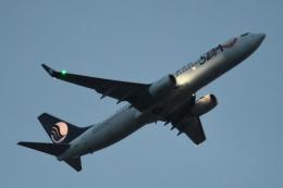 木人さんが、成田国際空港で撮影した山東航空 737-85Nの航空フォト(飛行機 写真・画像)
