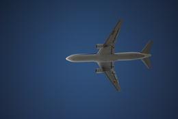 Nyaonさんが、伊丹空港で撮影した全日空 MD-11の航空フォト(飛行機 写真・画像)