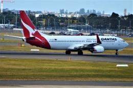 amagoさんが、シドニー国際空港で撮影したカンタス航空 737-838の航空フォト(飛行機 写真・画像)