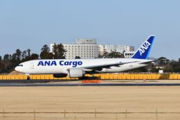 ポン太さんが、成田国際空港で撮影した全日空 777-F81の航空フォト(飛行機 写真・画像)