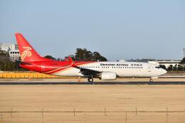 ポン太さんが、成田国際空港で撮影した深圳航空 737-87Lの航空フォト(飛行機 写真・画像)