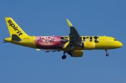 スピリット航空 Airbus A320neo (N932NK)  航空フォト | by zettaishinさん  撮影2021年06月27日%s