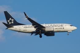 航空フォト:N13720 ユナイテッド航空 737-700