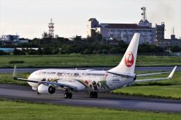 にしやんさんが、宮古空港で撮影した日本トランスオーシャン航空 737-8Q3の航空フォト(飛行機 写真・画像)