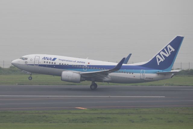 いんちゃんさんが、羽田空港で撮影した全日空 737-781の航空フォト(飛行機 写真・画像)