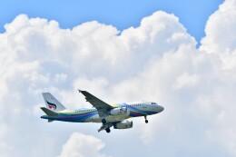 航空フォト:HS-PGN バンコクエアウェイズ A319