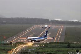 774gonさんが、稚内空港で撮影した全日空 737-781の航空フォト(飛行機 写真・画像)
