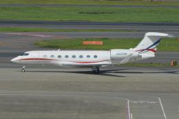Deepさんが、羽田空港で撮影したウィルミントン・トラスト・カンパニー G650 (G-VI)の航空フォト(飛行機 写真・画像)