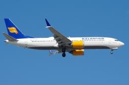 zettaishinさんが、ジェネラル・エドワード・ローレンス・ローガン国際空港で撮影したアイスランド航空 737-8-MAXの航空フォト(飛行機 写真・画像)