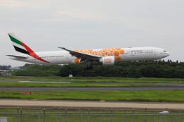 Kaaazさんが、成田国際空港で撮影したエミレーツ航空 777-31H/ERの航空フォト(飛行機 写真・画像)