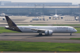 スカイチームKMJももこさんさんが、羽田空港で撮影したビスタラ 787-9の航空フォト(飛行機 写真・画像)