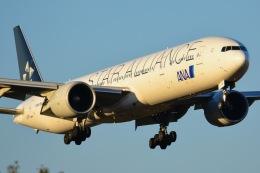 amarumeさんが、成田国際空港で撮影した全日空 777-381/ERの航空フォト(飛行機 写真・画像)