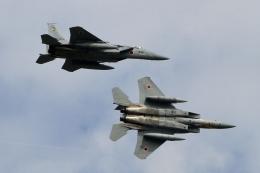 kaeru6006さんが、小松空港で撮影した航空自衛隊 F-15J Eagleの航空フォト(飛行機 写真・画像)