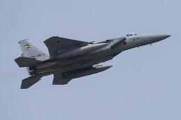 Koenig117さんが、小松空港で撮影した航空自衛隊 F-15J Eagleの航空フォト(飛行機 写真・画像)