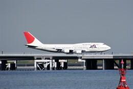 レドームさんが、羽田空港で撮影した日本航空 747-446Dの航空フォト(飛行機 写真・画像)