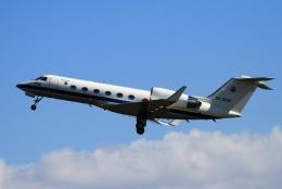 kaeru6006さんが、入間飛行場で撮影した航空自衛隊 U-4 Gulfstream IV (G-IV-MPA)の航空フォト(飛行機 写真・画像)