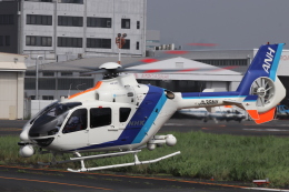 KAZFLYERさんが、東京ヘリポートで撮影したオールニッポンヘリコプター EC135T2の航空フォト(飛行機 写真・画像)