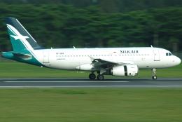 jun☆さんが、シンガポール・チャンギ国際空港で撮影したシルクエア A319-132の航空フォト(飛行機 写真・画像)