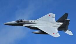 こびとさんさんが、三沢飛行場で撮影した航空自衛隊 F-15J Eagleの航空フォト(飛行機 写真・画像)