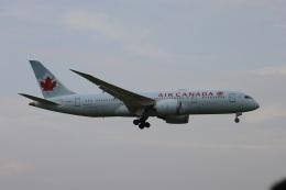 OS52さんが、成田国際空港で撮影したエア・カナダ 787-8 Dreamlinerの航空フォト(飛行機 写真・画像)