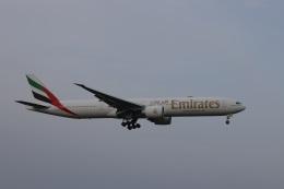 OS52さんが、成田国際空港で撮影したエミレーツ航空 777-31H/ERの航空フォト(飛行機 写真・画像)