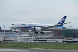 つっさんさんが、福岡空港で撮影した全日空 787-8 Dreamlinerの航空フォト(飛行機 写真・画像)