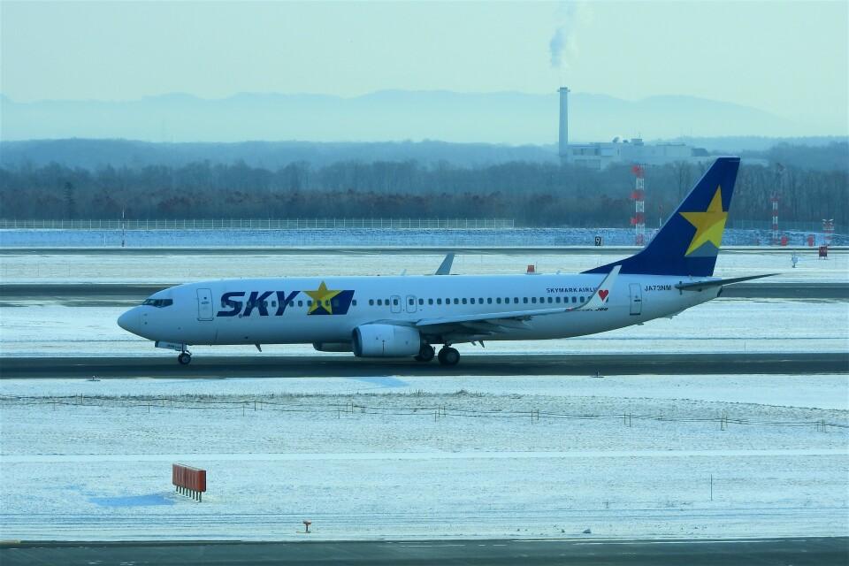 timeさんのスカイマーク Boeing 737-800 (JA73NM) 航空フォト