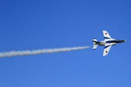 kaeru6006さんが、入間飛行場で撮影した航空自衛隊 T-4の航空フォト(飛行機 写真・画像)