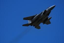 ここはどこ?さんが、千歳基地で撮影した航空自衛隊 F-15DJ Eagleの航空フォト(飛行機 写真・画像)