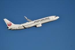 344さんが、羽田空港で撮影した日本航空 737-846の航空フォト(飛行機 写真・画像)