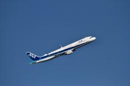 344さんが、羽田空港で撮影した全日空 A321-211の航空フォト(飛行機 写真・画像)