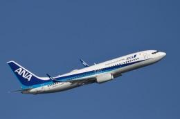 344さんが、羽田空港で撮影した全日空 737-8ALの航空フォト(飛行機 写真・画像)