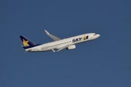 344さんが、羽田空港で撮影したスカイマーク 737-8ALの航空フォト(飛行機 写真・画像)