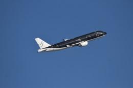 344さんが、羽田空港で撮影したスターフライヤー A320-214の航空フォト(飛行機 写真・画像)