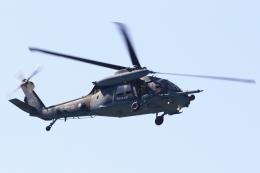 kaeru6006さんが、名古屋飛行場で撮影した航空自衛隊 UH-60Jの航空フォト(飛行機 写真・画像)
