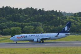しかばねさんが、成田国際空港で撮影した山東航空 737-85Nの航空フォト(飛行機 写真・画像)