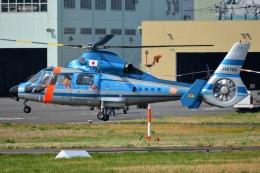 あまるめさんが、東京ヘリポートで撮影した福岡県警察 AS365N2 Dauphin 2の航空フォト(飛行機 写真・画像)