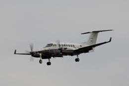 tsubameさんが、福岡空港で撮影した陸上自衛隊 LR-2の航空フォト(飛行機 写真・画像)