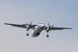 imosaさんが、羽田空港で撮影した海上保安庁 DHC-8-315Q MPAの航空フォト(飛行機 写真・画像)